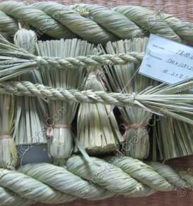 Quại đan từ lúa non VNH0135
